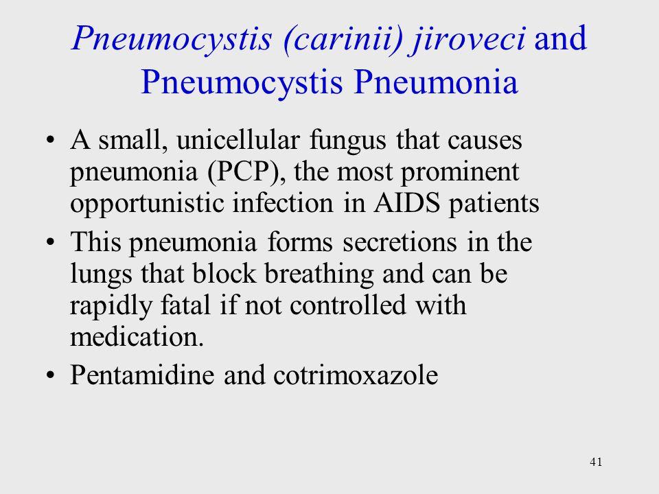 Pneumocystis (carinii) jiroveci and Pneumocystis Pneumonia