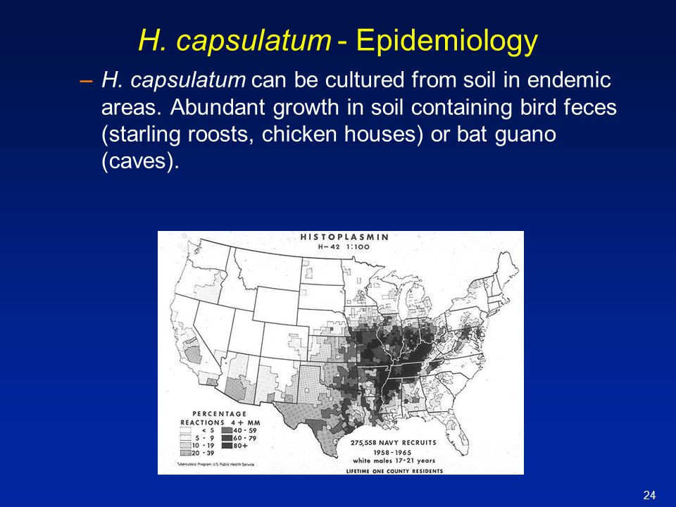 H. capsulatum - Epidemiology