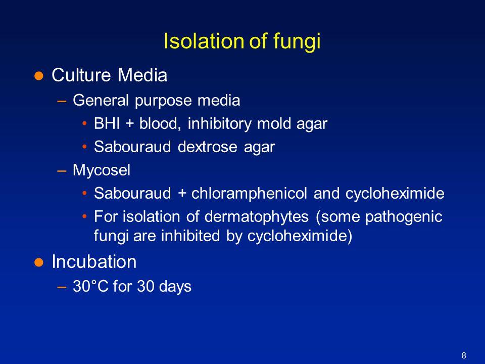 Isolation of fungi Culture Media Incubation General purpose media