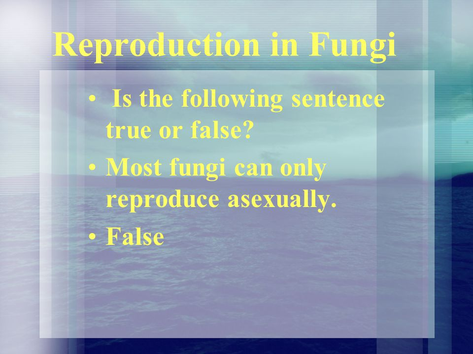 Reproduction in Fungi Is the following sentence true or false