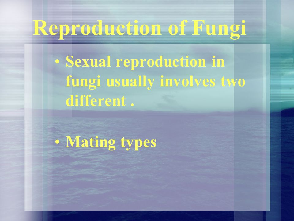 Reproduction of Fungi Sexual reproduction in fungi usually involves two different . Mating types