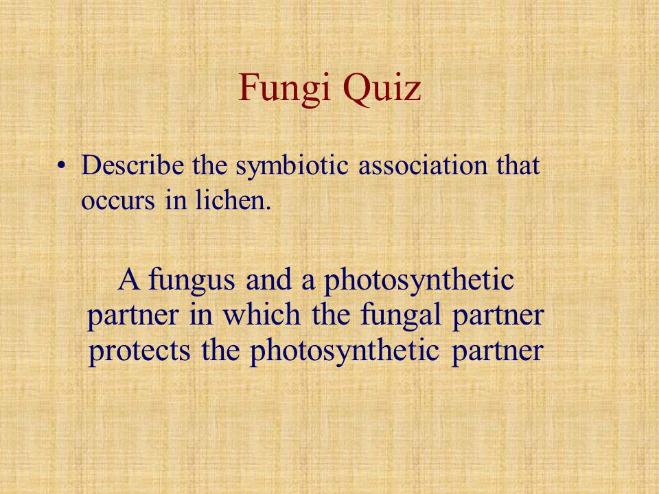 Fungi Quiz Describe the symbiotic association that occurs in lichen.
