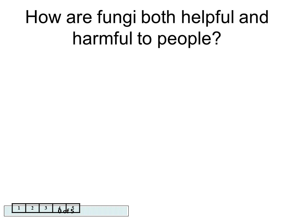 How are fungi both helpful and harmful to people