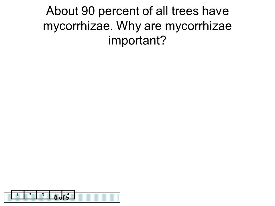 About 90 percent of all trees have mycorrhizae