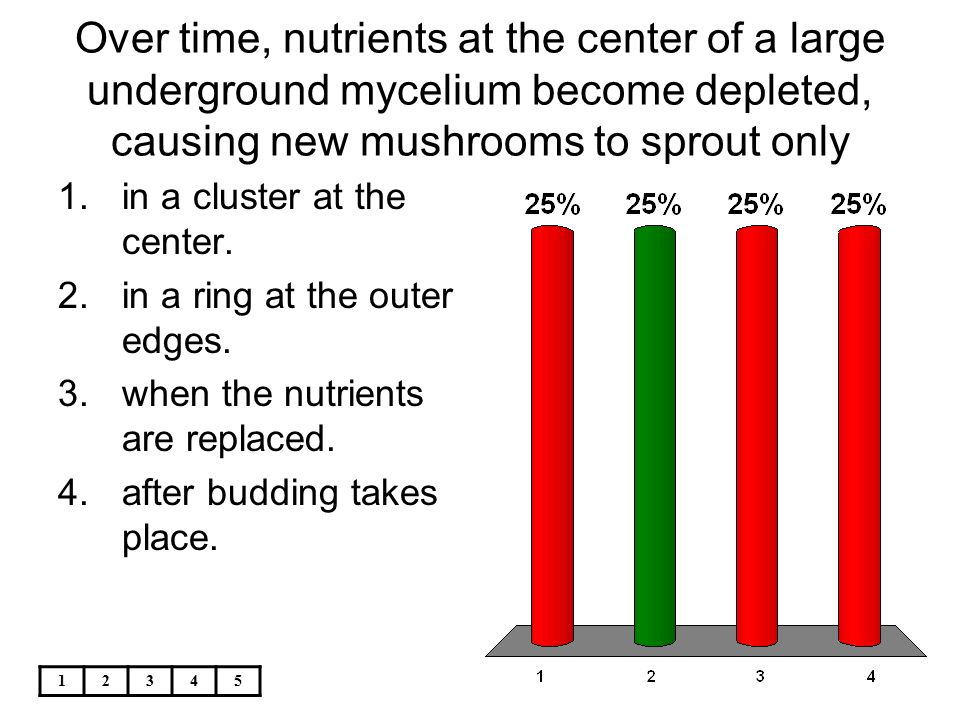 Over time, nutrients at the center of a large underground mycelium become depleted, causing new mushrooms to sprout only