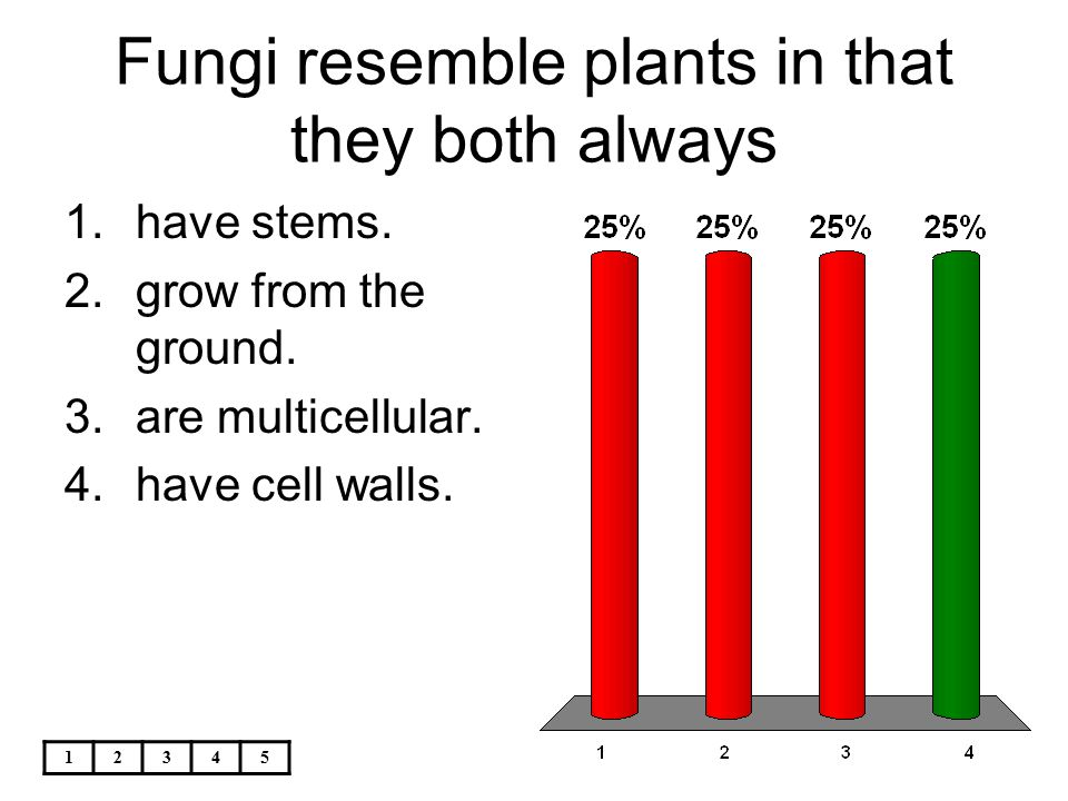 Fungi resemble plants in that they both always