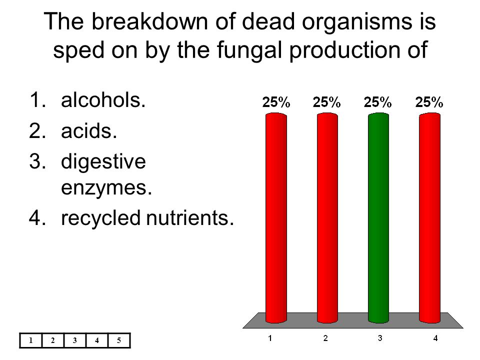 The breakdown of dead organisms is sped on by the fungal production of