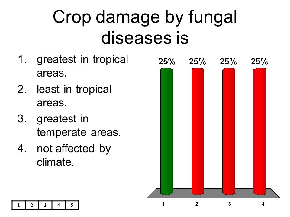 Crop damage by fungal diseases is