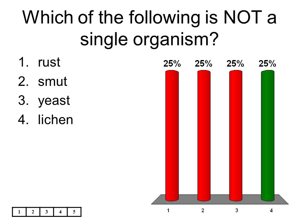 Which of the following is NOT a single organism