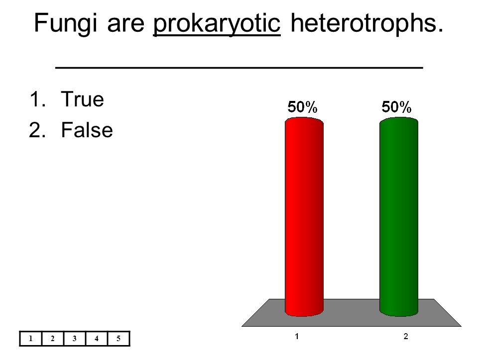 Fungi are prokaryotic heterotrophs. _________________________