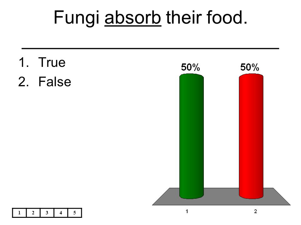 Fungi absorb their food. _________________________