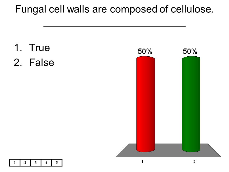 Fungal cell walls are composed of cellulose. _________________________
