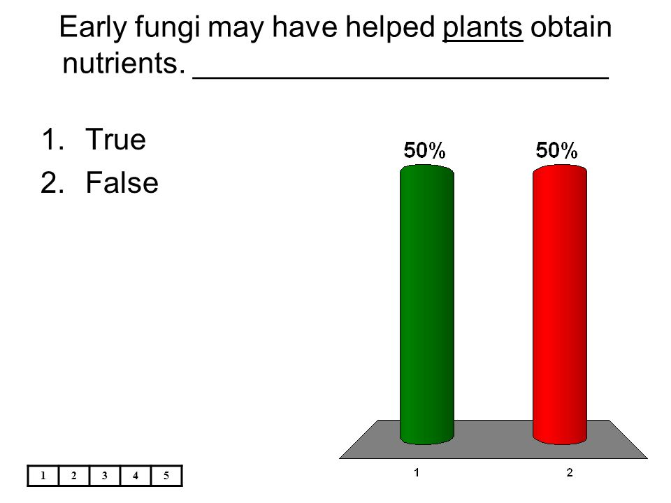 Early fungi may have helped plants obtain nutrients