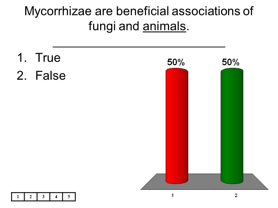 Mycorrhizae are beneficial associations of fungi and animals