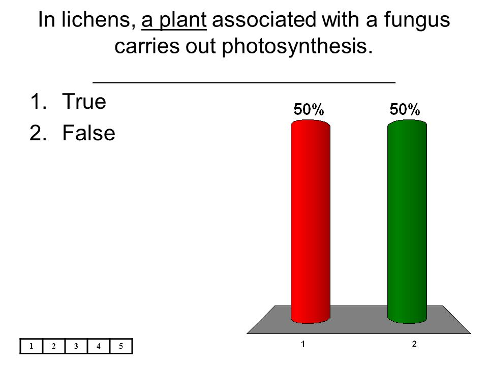 In lichens, a plant associated with a fungus carries out photosynthesis. _________________________
