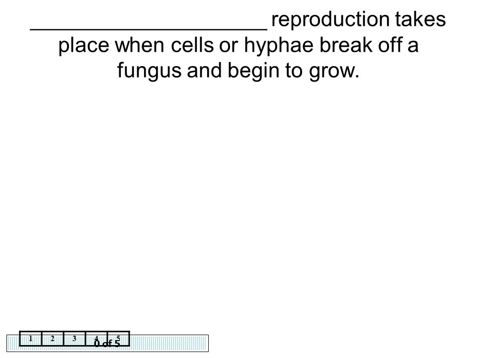 ____________________ reproduction takes place when cells or hyphae break off a fungus and begin to grow.