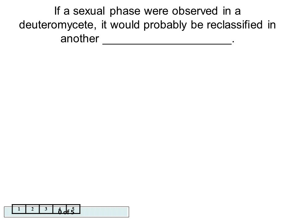 If a sexual phase were observed in a deuteromycete, it would probably be reclassified in another ____________________.