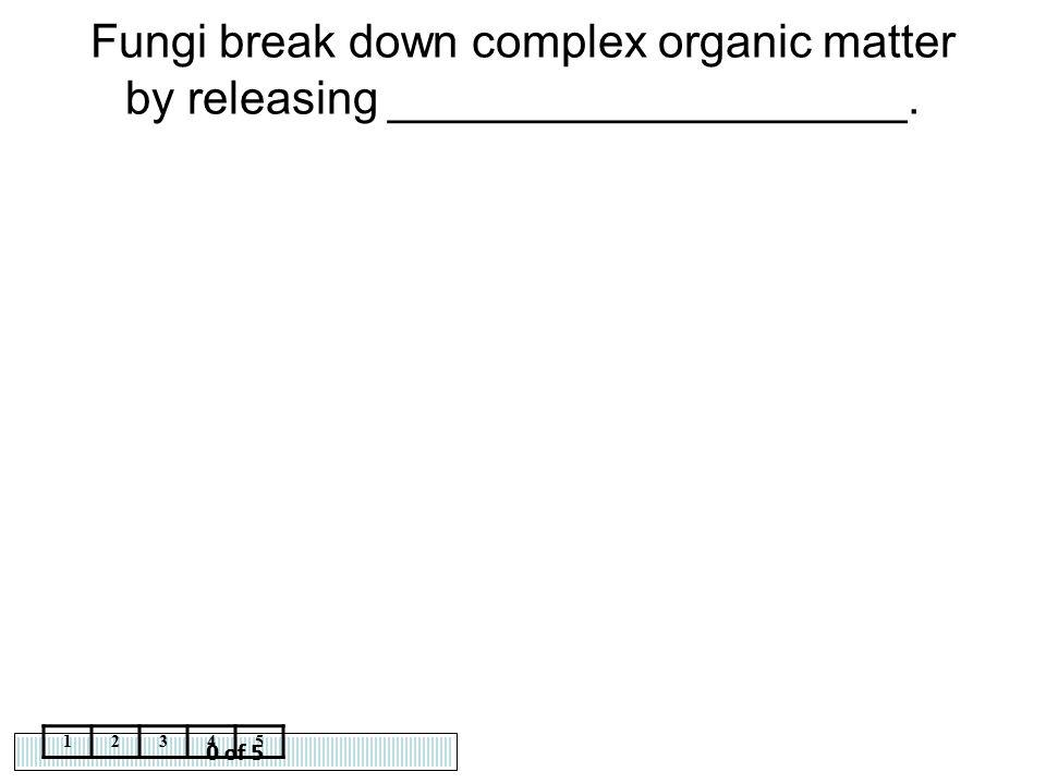 Fungi break down complex organic matter by releasing ____________________.