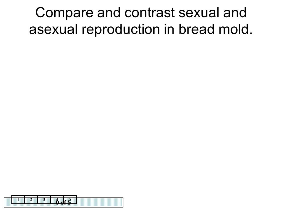 Compare and contrast sexual and asexual reproduction in bread mold.