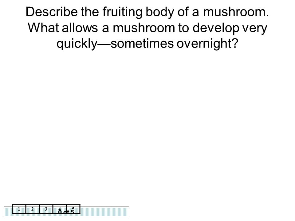 Describe the fruiting body of a mushroom