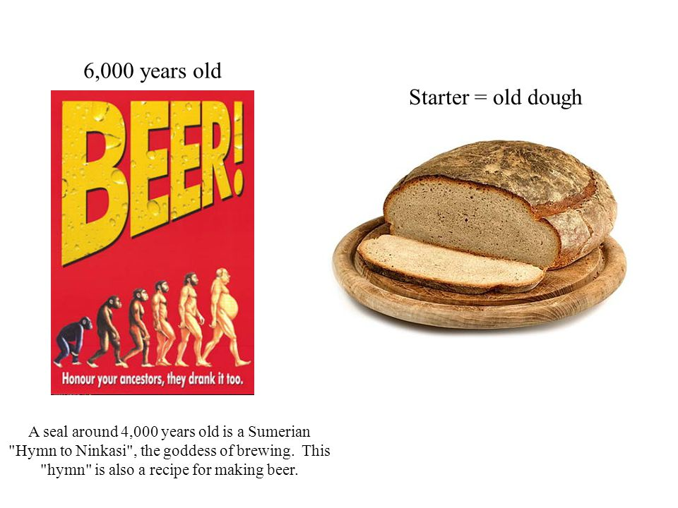 6,000 years old Starter = old dough