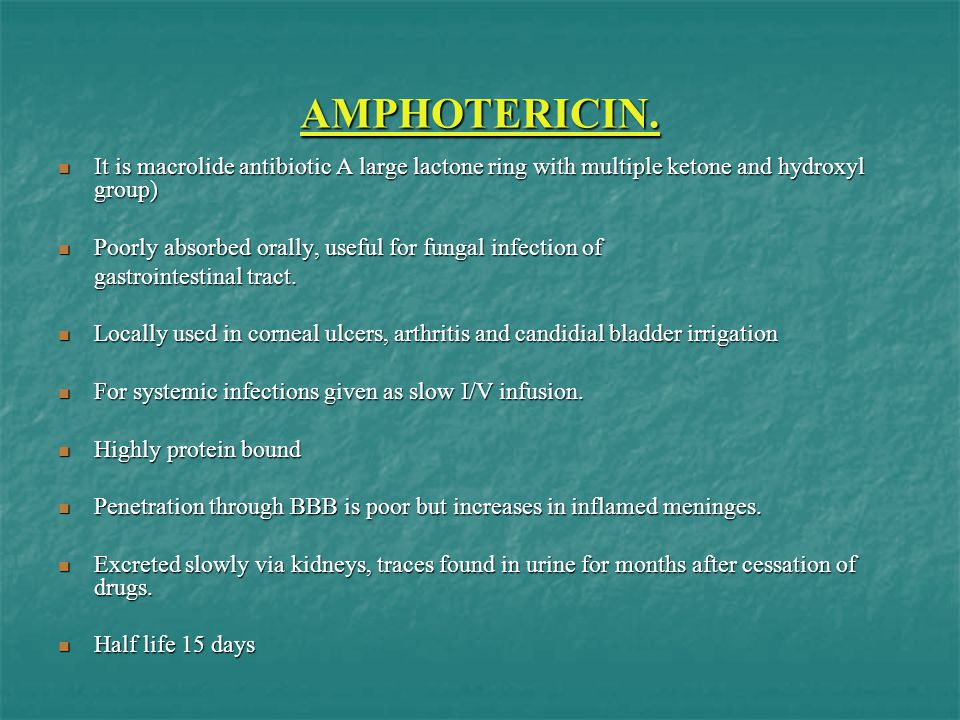 AMPHOTERICIN. It is macrolide antibiotic A large lactone ring with multiple ketone and hydroxyl group)