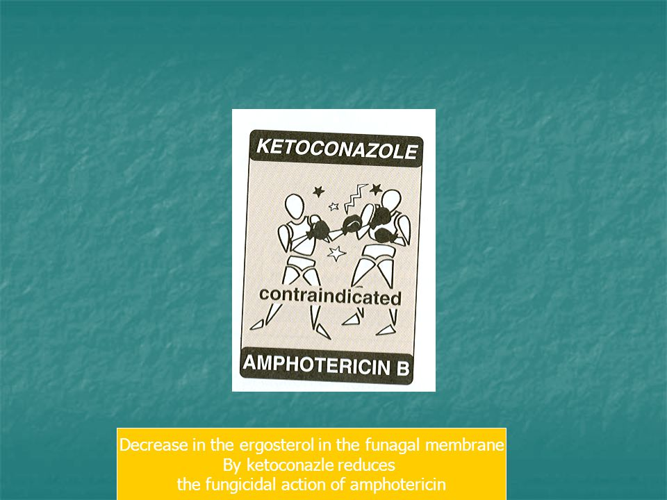 Decrease in the ergosterol in the funagal membrane
