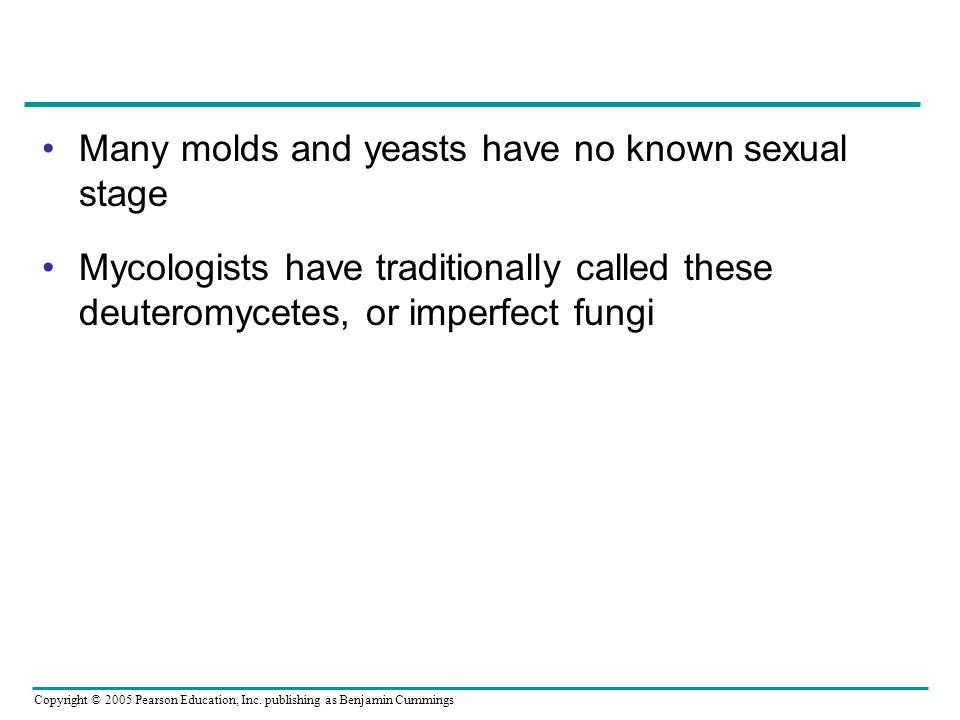 Many molds and yeasts have no known sexual stage