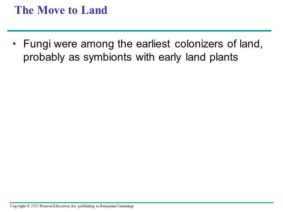 The Move to Land Fungi were among the earliest colonizers of land, probably as symbionts with early land plants.