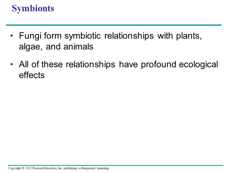 Symbionts Fungi form symbiotic relationships with plants, algae, and animals.