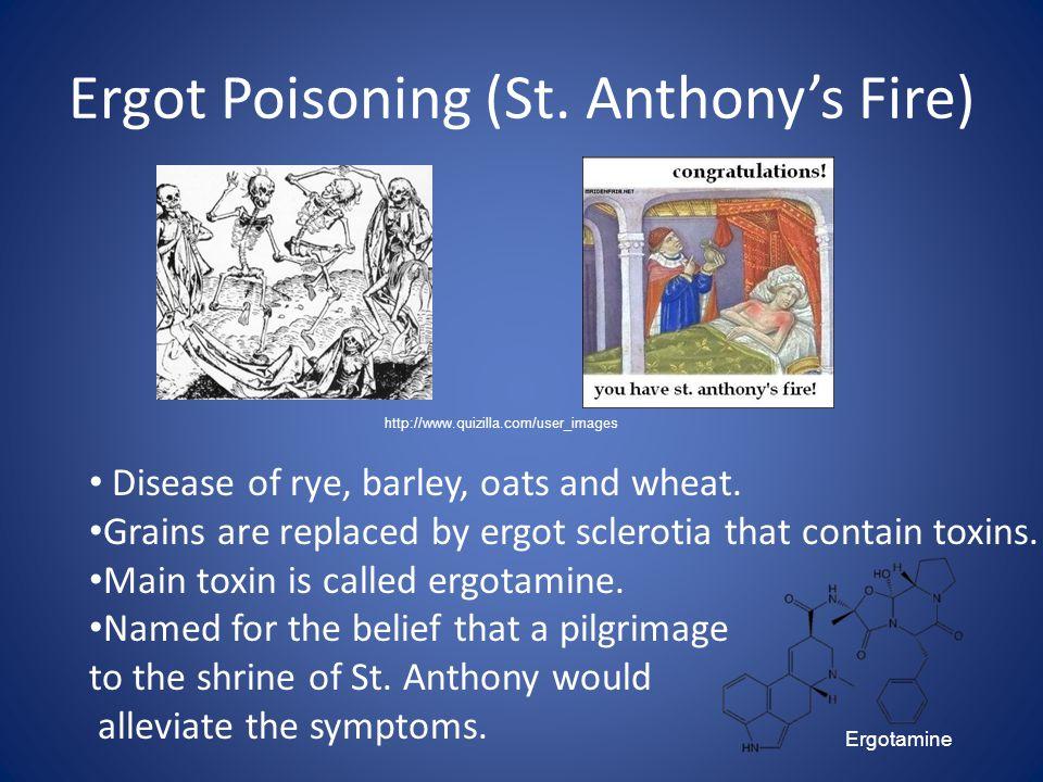 Ergot Poisoning (St. Anthony's Fire)