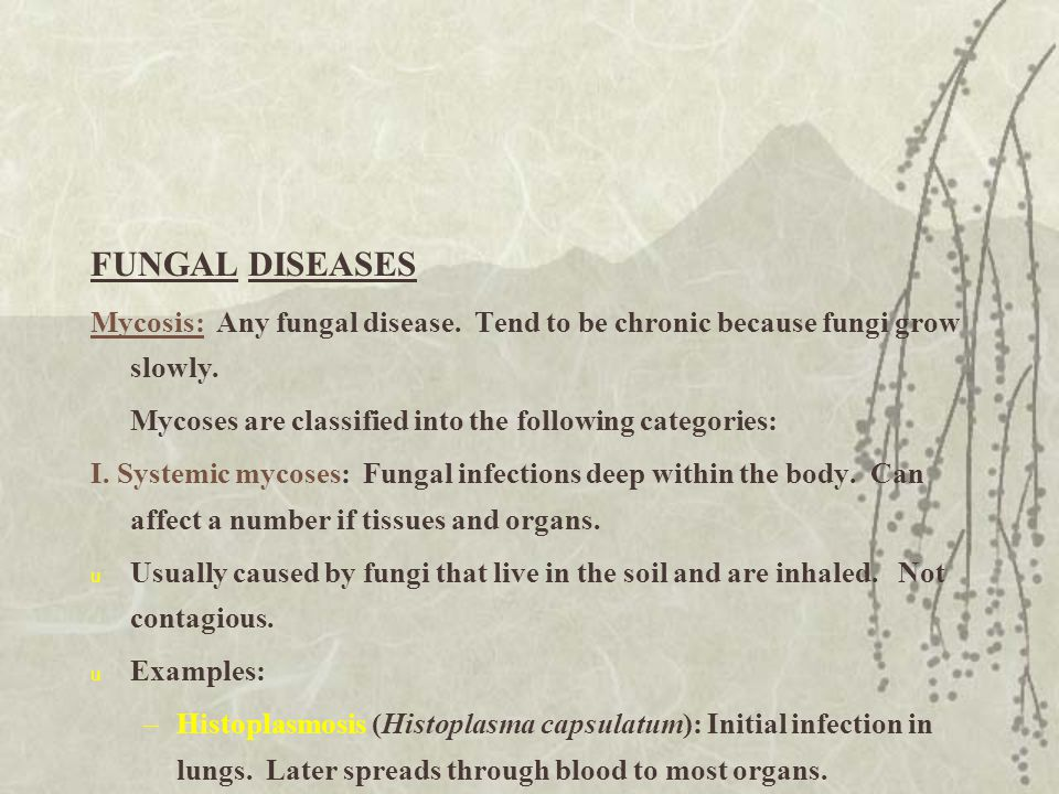 FUNGAL DISEASES Mycosis: Any fungal disease. Tend to be chronic because fungi grow slowly. Mycoses are classified into the following categories: