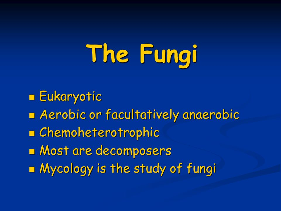 The Fungi Eukaryotic Aerobic or facultatively anaerobic