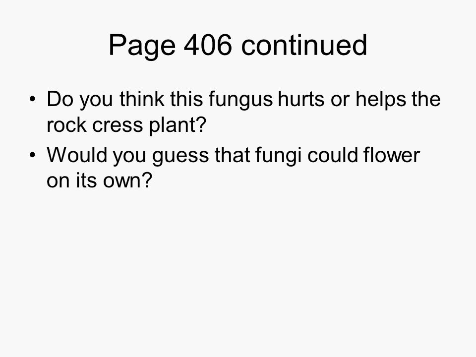 Page 406 continued Do you think this fungus hurts or helps the rock cress plant.