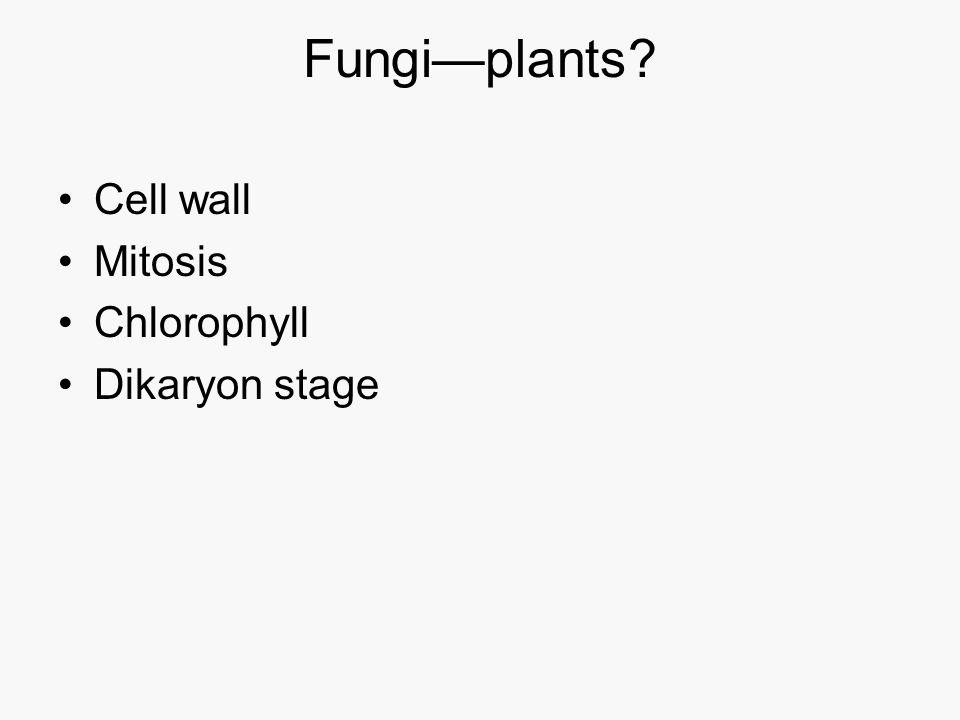 Fungi—plants Cell wall Mitosis Chlorophyll Dikaryon stage