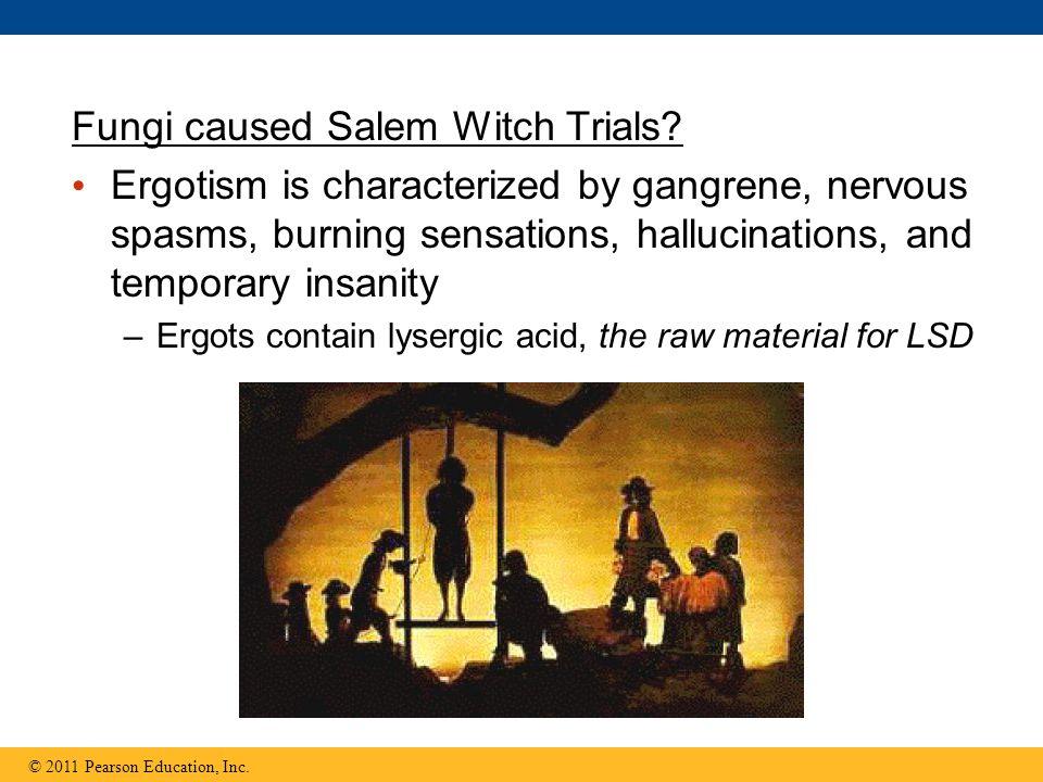 Fungi caused Salem Witch Trials