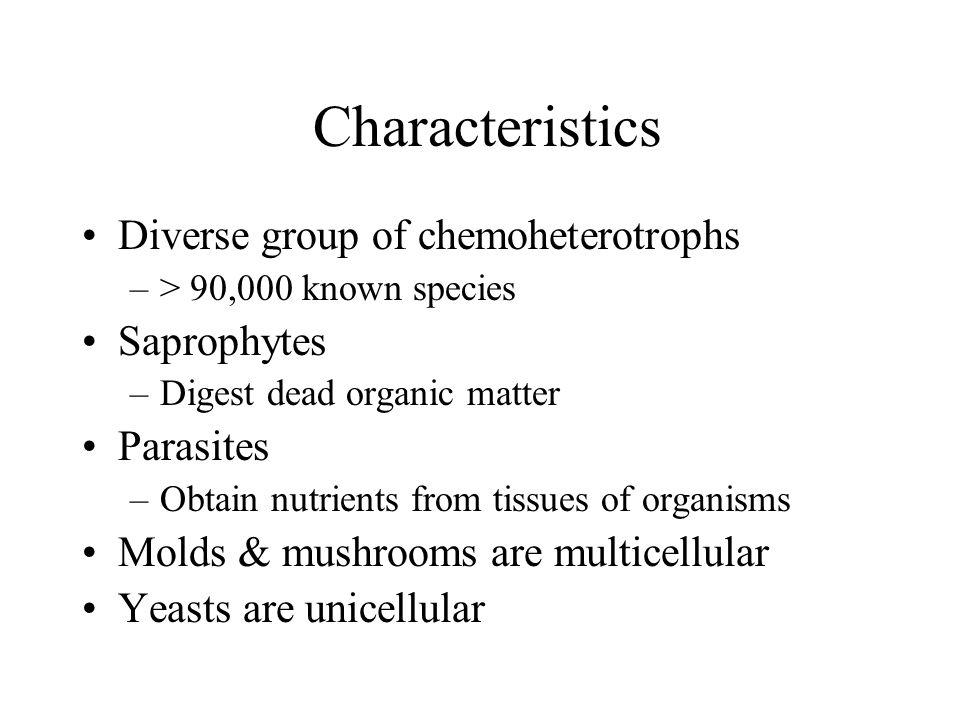 Characteristics Diverse group of chemoheterotrophs Saprophytes