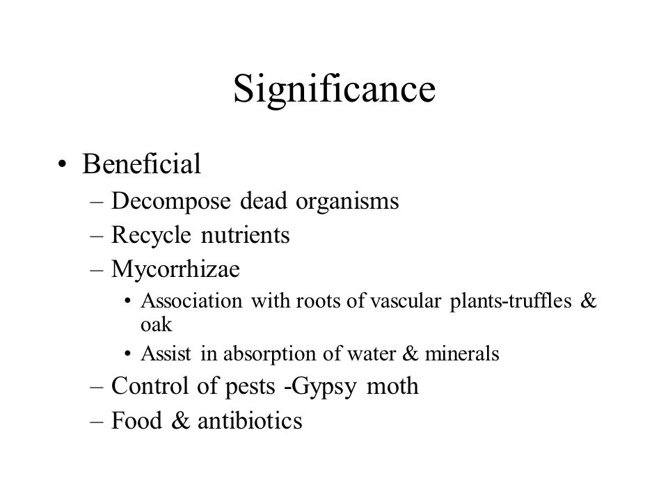 Significance Beneficial Decompose dead organisms Recycle nutrients