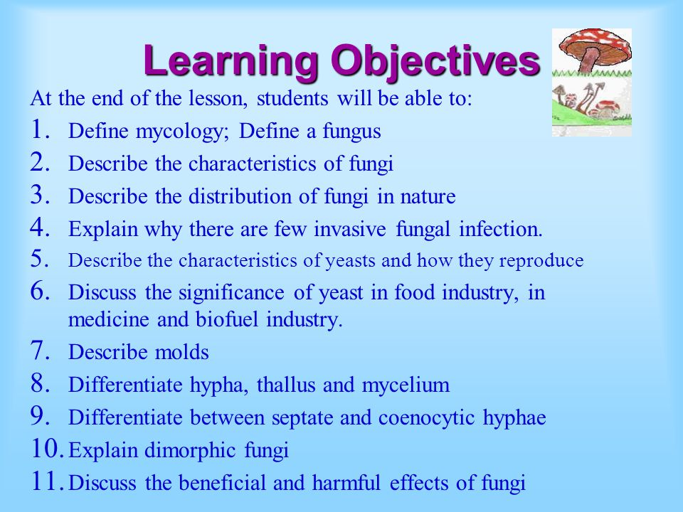 Learning Objectives At the end of the lesson, students will be able to: Define mycology; Define a fungus.