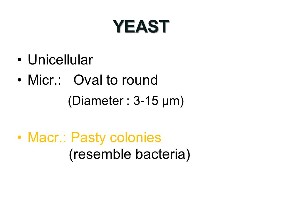 YEAST Unicellular Micr.: Oval to round (Diameter : 3-15 µm)