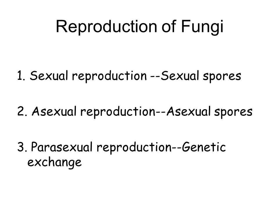 Reproduction of Fungi 1. Sexual reproduction --Sexual spores
