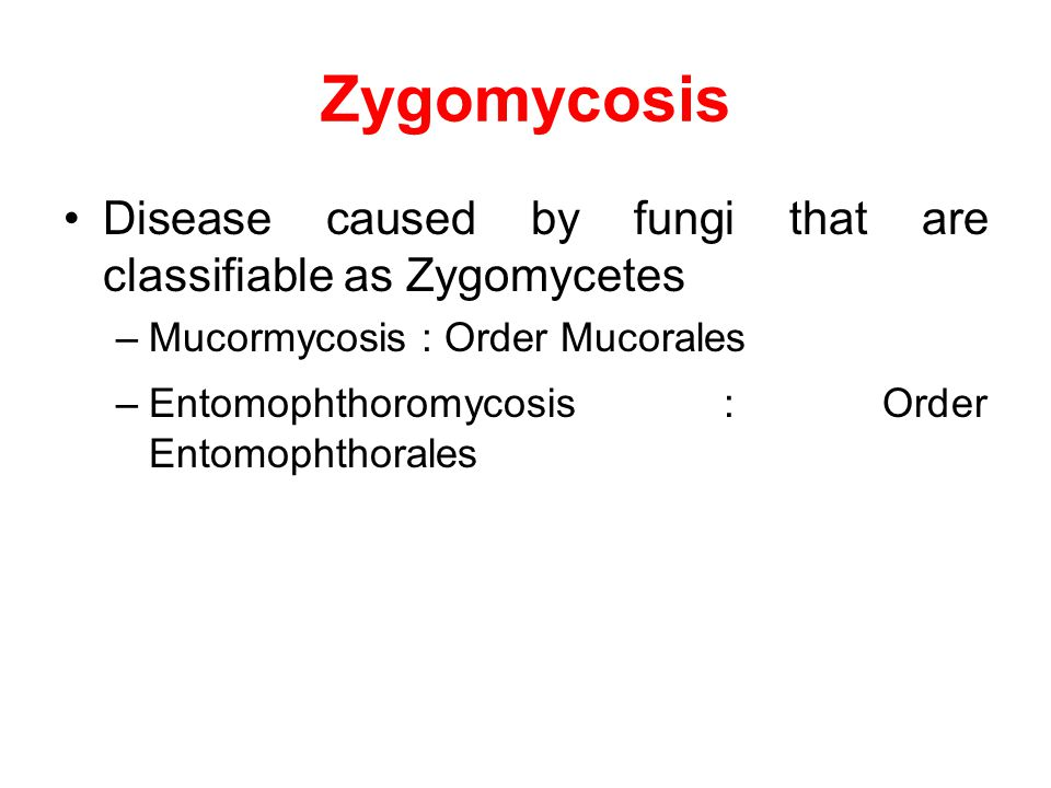 Zygomycosis Disease caused by fungi that are classifiable as Zygomycetes. Mucormycosis : Order Mucorales.