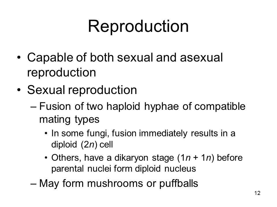 Reproduction Capable of both sexual and asexual reproduction