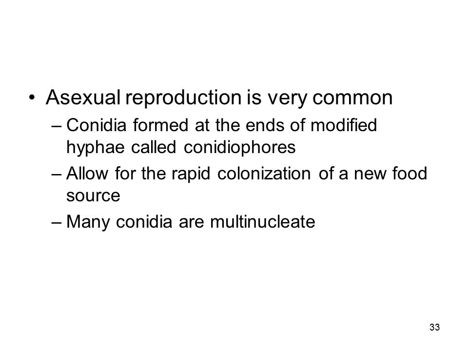 Asexual reproduction is very common
