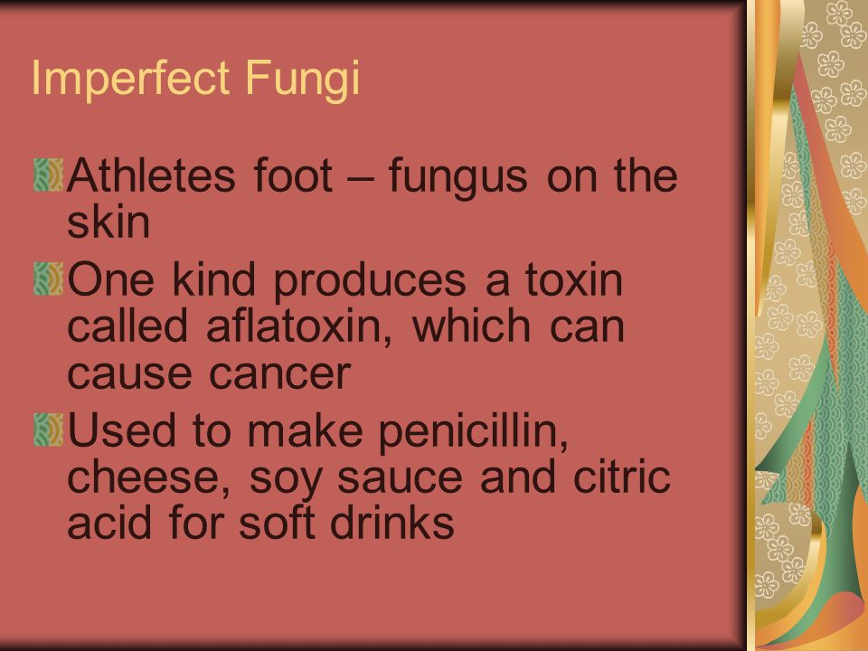 Imperfect Fungi Athletes foot – fungus on the skin. One kind produces a toxin called aflatoxin, which can cause cancer.