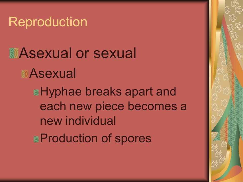 Asexual or sexual Reproduction Asexual