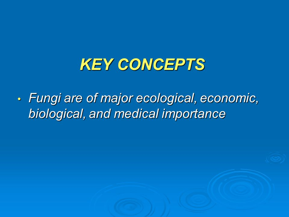 KEY CONCEPTS Fungi are of major ecological, economic, biological, and medical importance