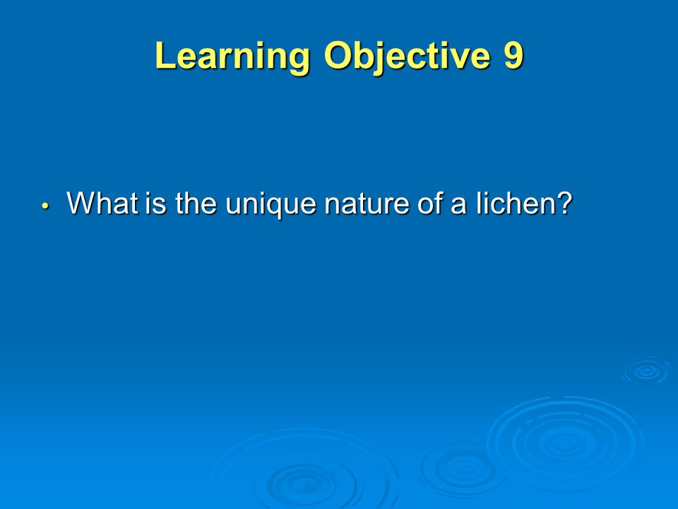 Learning Objective 9 What is the unique nature of a lichen
