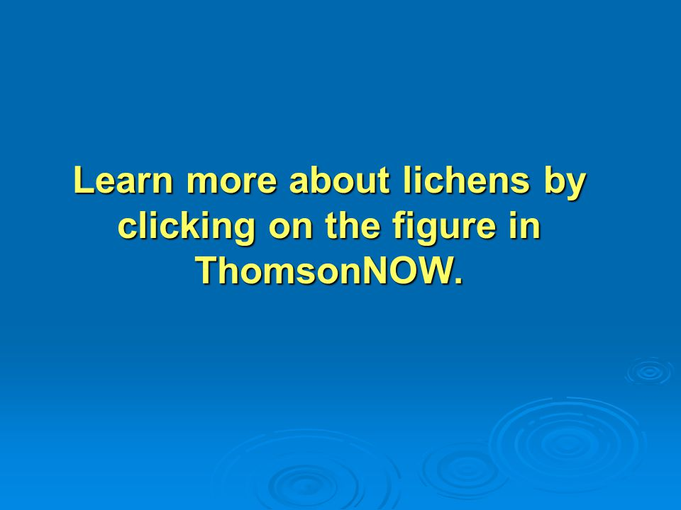Learn more about lichens by clicking on the figure in ThomsonNOW.