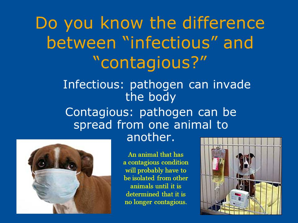 Do you know the difference between infectious and contagious